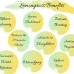 Lemongrass Health Drink